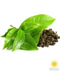 Mademoiselle Organic Green Tea Extract - Organic